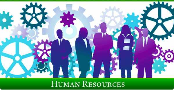 Management decisions on 'Human Resources' at StartUp