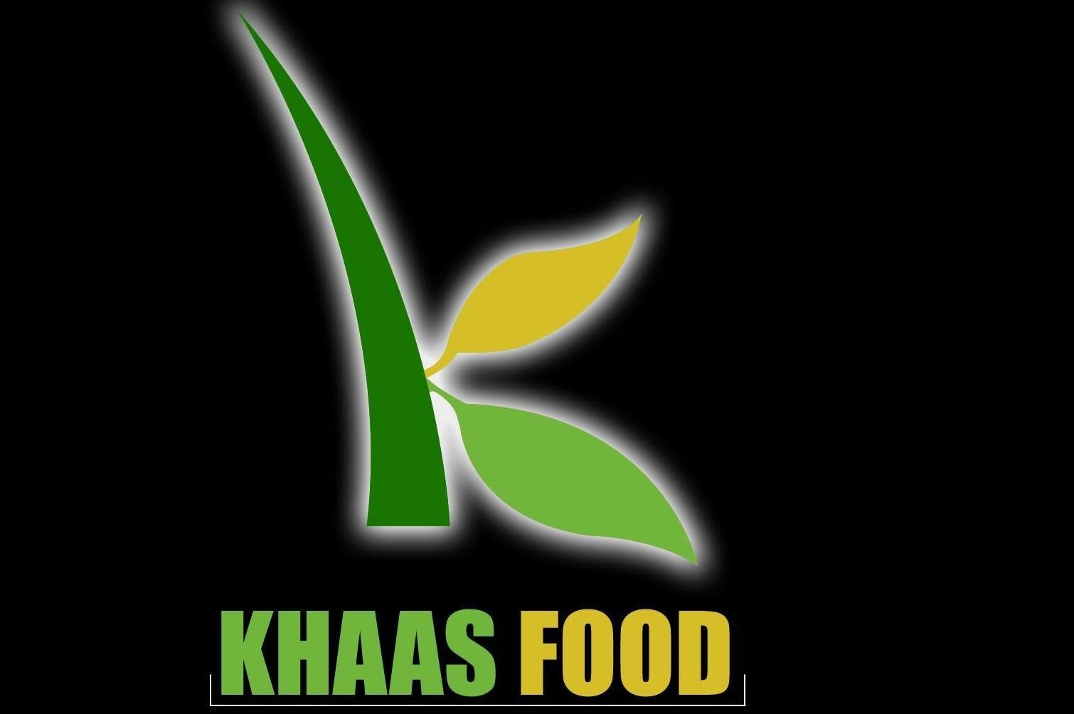 Khaas Food 101: Inside Khaas Food's Ambition To Become Your Ultimate Destination for Pure Food Products